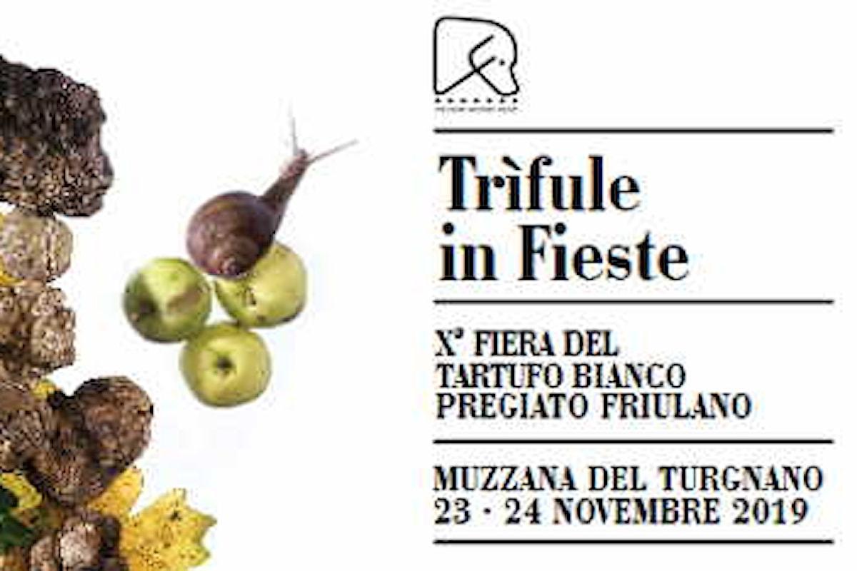 Festa del tartufo bianco in Friuli Venezia Giulia