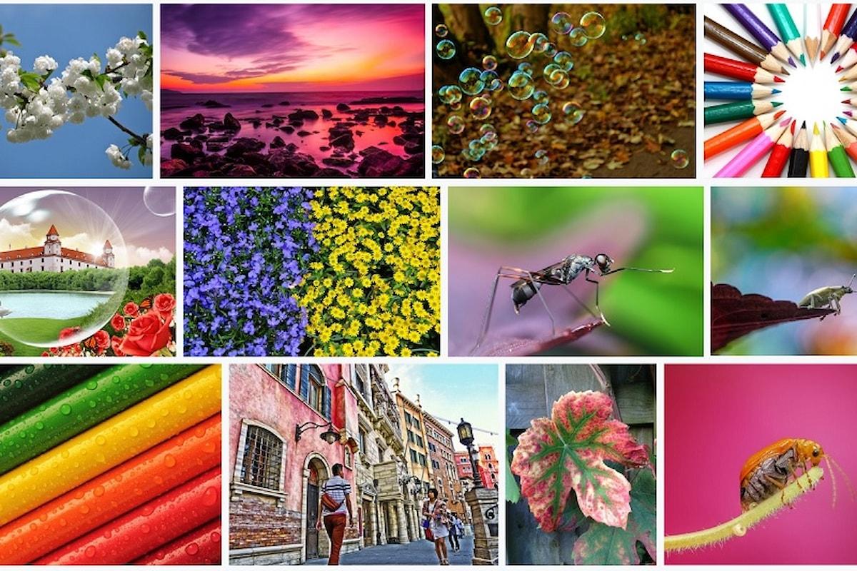 Immagini free per i propri articoli? Cinque risorse da conoscere