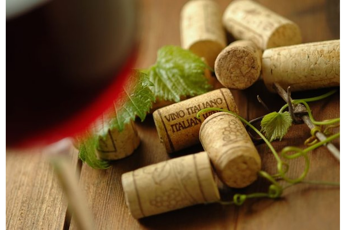 La passione per il vino, da sempre: Giordano Vini, tutto lo spirito dei territori italiani più vocati