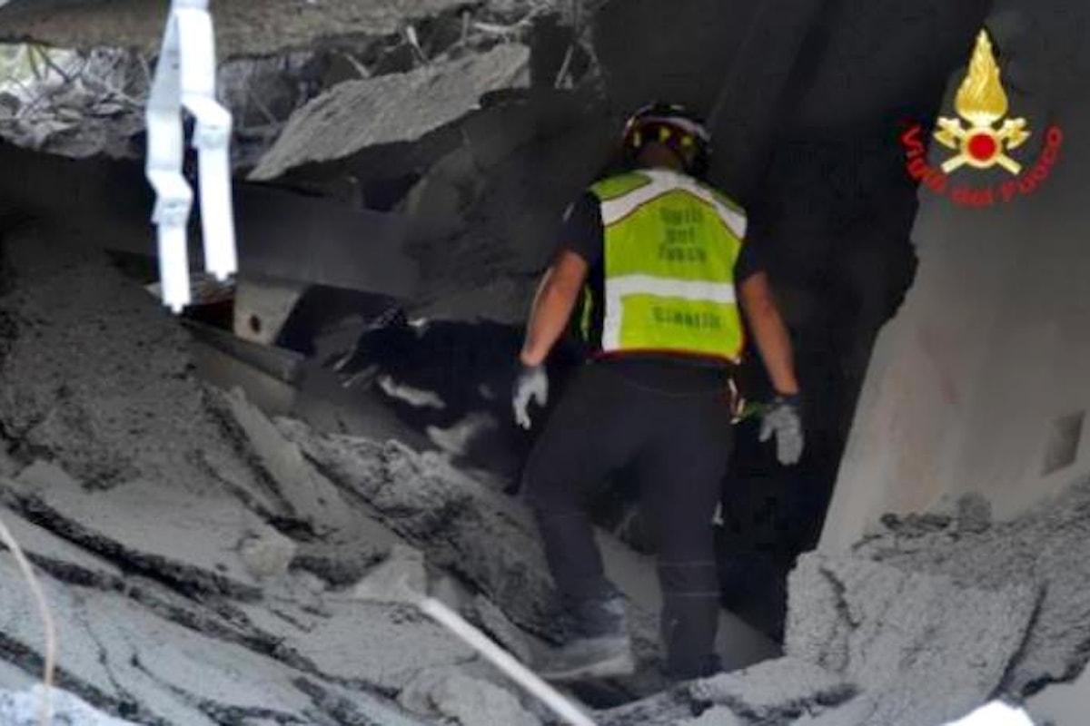 A Genova si lavora per rimuovere le macerie, ma si spera ancora di trovare qualcuno in vita