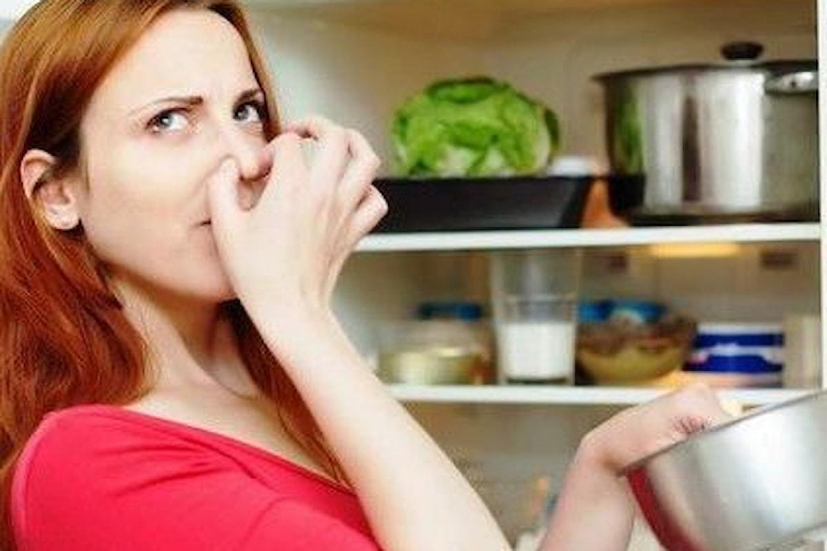 Eliminare i cattivi odori del frigo? Si può fare!