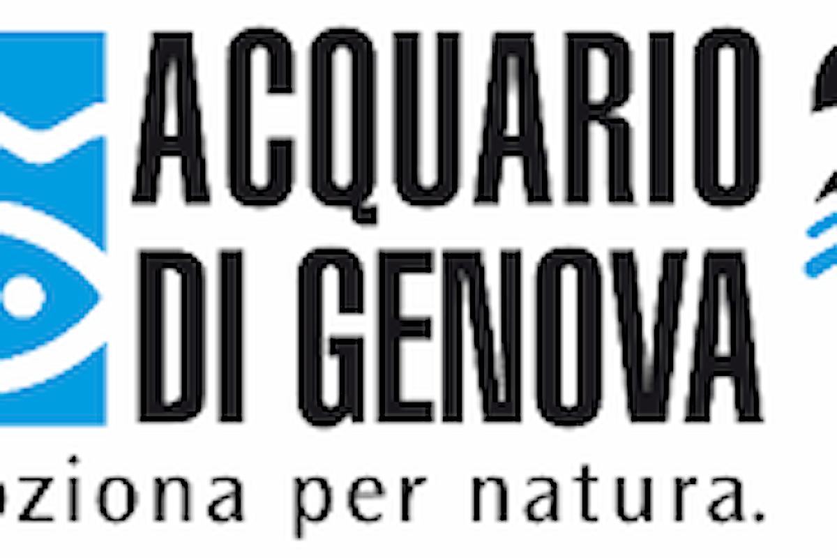 Acquario di Genova: Tutti gli Sconti