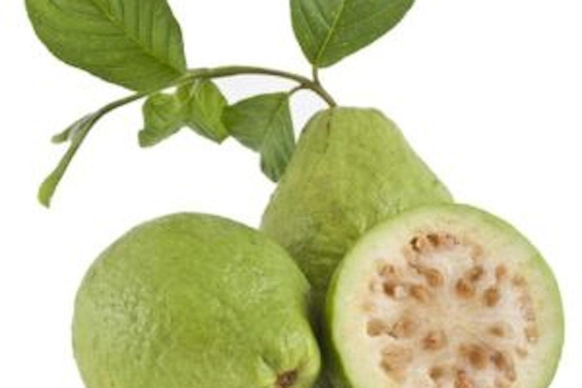 Guava proprietà e benefici