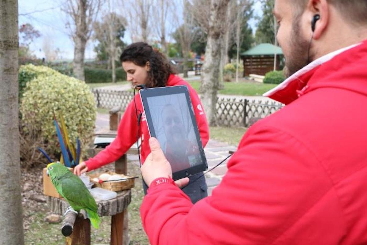 Zoomarine, il parco divertimenti alle porte di Roma, rafforza le proprie attività di edutainment anche con lezioni via Skype