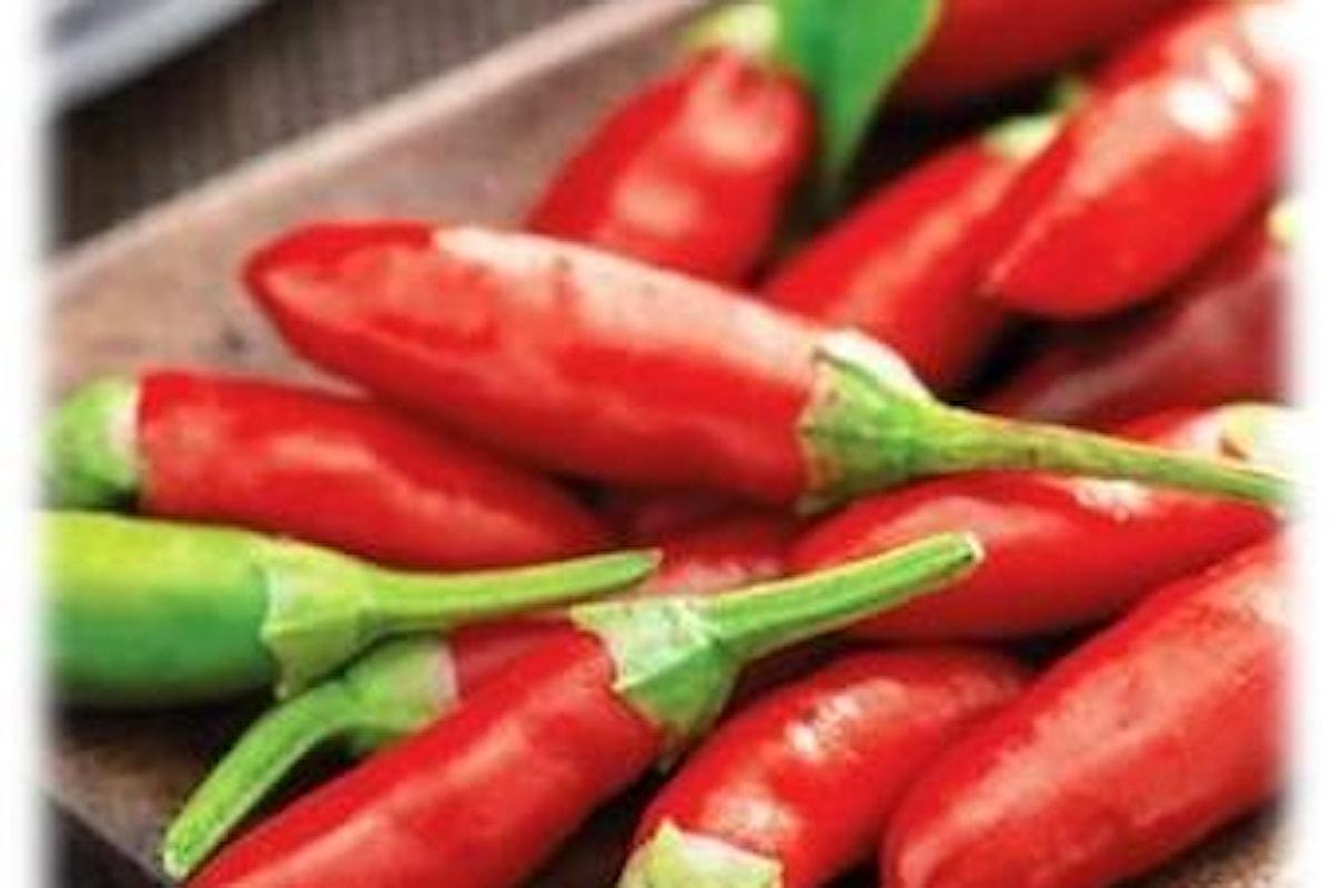 Scorta di peperoncini fatta! Come li conserviamo per i mesi successivi?