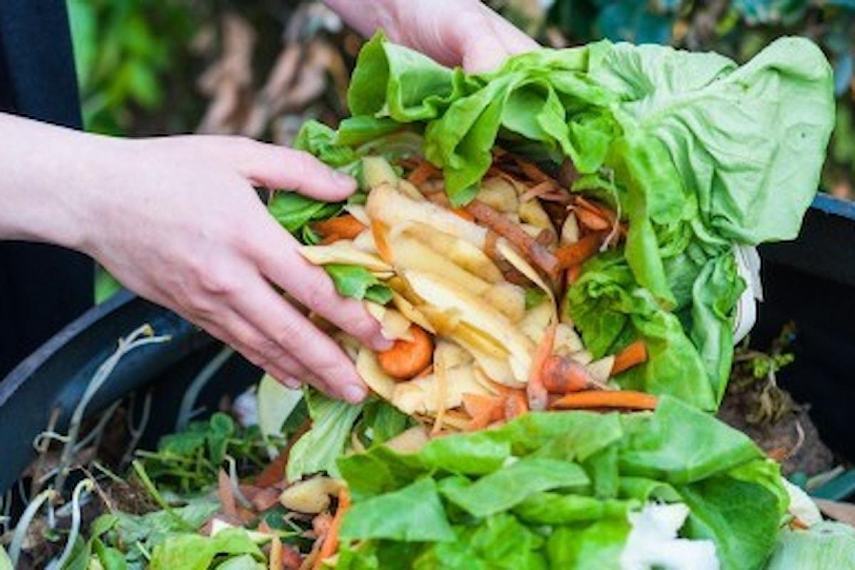 Sprechi alimentari: a Roma si combattono col food sharing