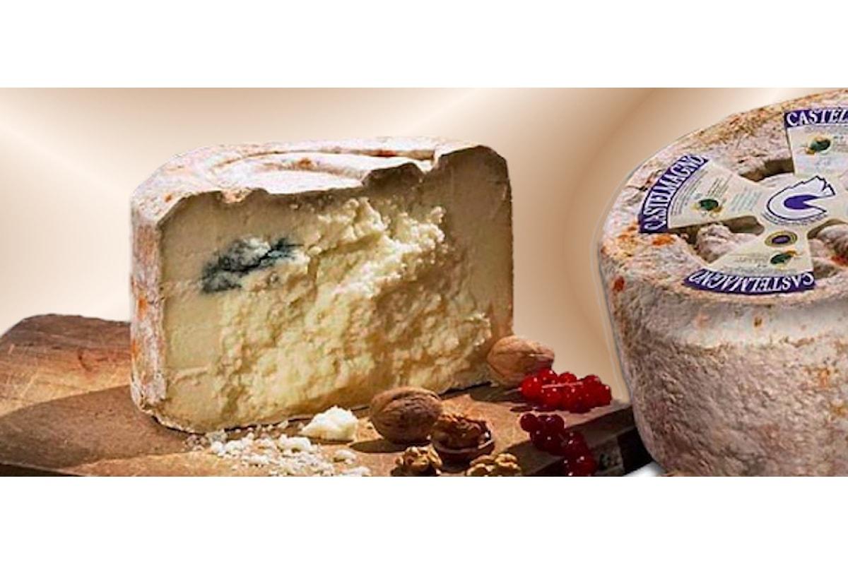 Castelmagno DOP, un formaggio con mille anni di storia