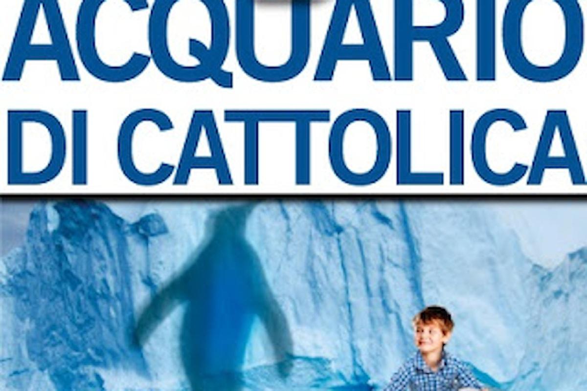 Acquario di Cattolica 2017: Tutte le Offerte Attive