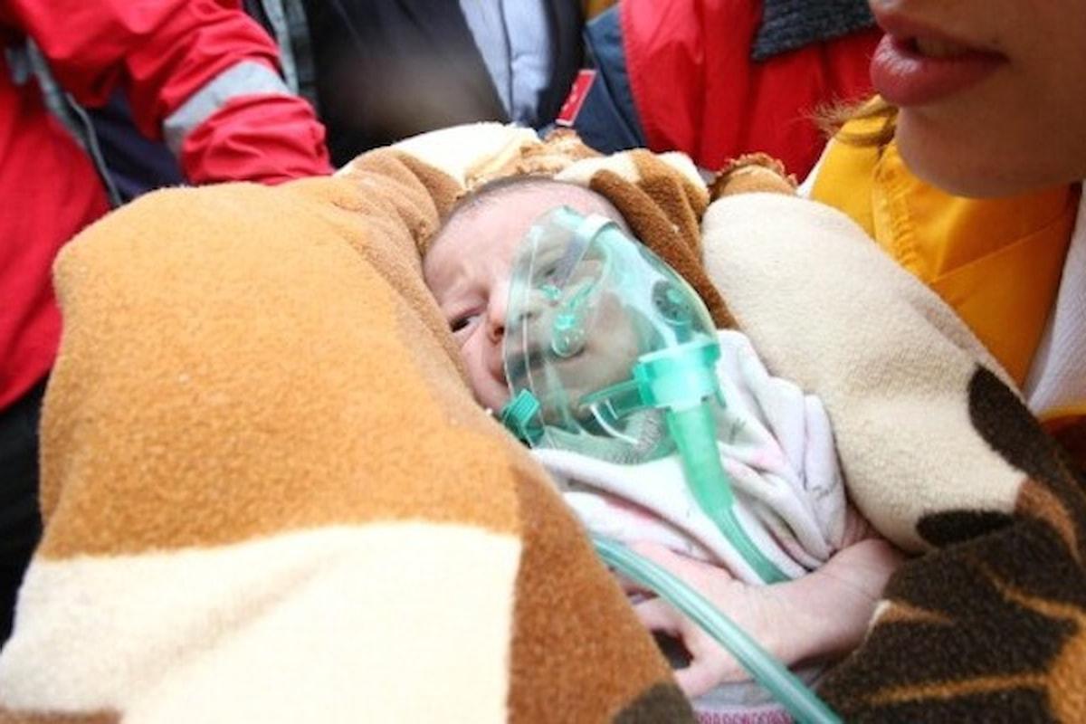 LA VITA CHE FUGGE VIA - sono tanti i bambini vittime del terremoto - la più piccola aveva 8 mesi